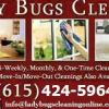 Lady Bugs Cleaning